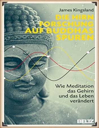 James Kingsland: Die Hirnforschung auf Buddhas Spuren- Wie Meditation das Gehirn und das Leben verändert